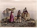 Sommer, Giorgio (1834-1914) - n. 11651 - Capri - Costume.jpg