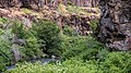 South Fork John Day Wild and Scenic River (36388526366).jpg