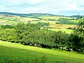 South Herefordshire farmland 1 - geograph.org.uk - 1397862.jpg