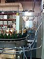 Sparkling wine bottling line at Columbia Crest.jpg