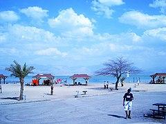 Spot at the Dead Sea.jpg