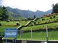 Srinagar - Nishat Mughal Gardens 01.JPG