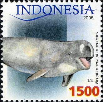Finless porpoise - Image: Stamps of Indonesia, 040 05