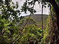 Stanwell Tops - panoramio (1).jpg