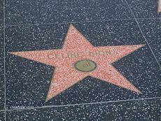 Star Celine.jpg