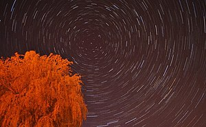 Polaris - A typical Northern Hemisphere star trail with Polaris in the center