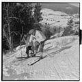 Stortinget på ski - L0044 696Fo30141609070144.jpg