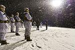 Stridstrenbataljonens kontingent 1401 på oppstilling.jpg