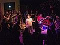 Summer Revival Tour.jpg