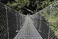 Suspension Bridge-IMG 1581.jpg