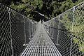 Suspension Bridge-IMG 1581.jpg