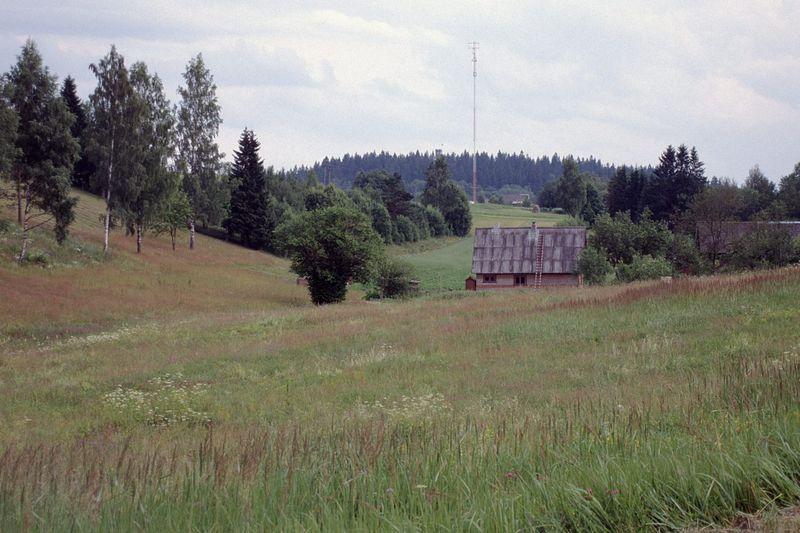 Suur Munamägi (taamal, metsane)