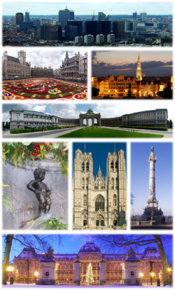 A collage with several views of Brussels, Top: View of the Northern Quarter business district, 2nd left: Floral carpet event in the Grand Place, 2nd right: Town Hall and Mont des Arts area, 3rd: Cinquantenaire Park, 4th left: Manneken Pis, 4th middle: St. Michael and St. Gudula Cathedral, 4th right: Congress Column, Bottom: Royal Palace of Brussels