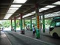 TPM MTR MiniBus Terminus.JPG