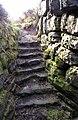 Tappoch or Torwood Broch Stairwell - geograph.org.uk - 436930.jpg
