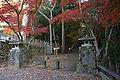 Tatsuno Momijidani01s4592.jpg