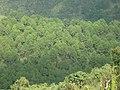 Taunggyi, Myanmar (Burma) - panoramio (18).jpg