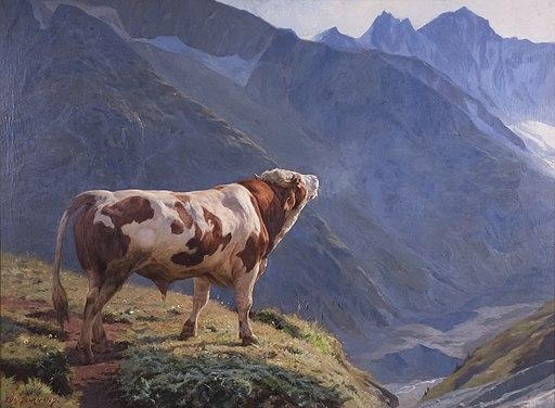 Taureau dans les Alpes oil painting 1884