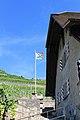 Terrasses de Lavaux - panoramio (110).jpg