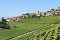 Terrasses de Lavaux - panoramio (51).jpg