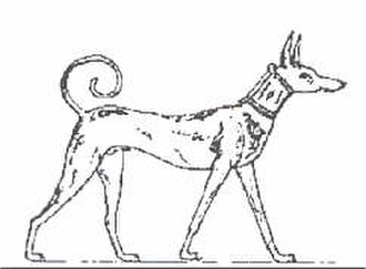 Abuwtiyuw - Image of a Tesem dog from the grave of Intef II, c. 2065 BC