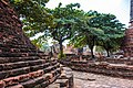 Thailand - Ayutthaya (24576633300).jpg