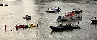 River Thames whale