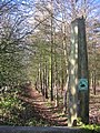 The Chalkland Way - geograph.org.uk - 125342.jpg