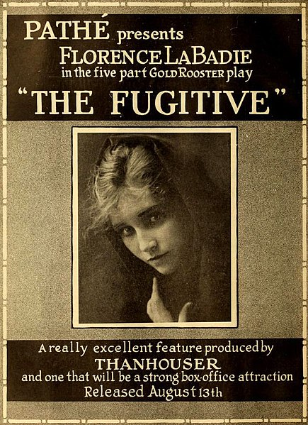ファイル:The Fugitive 2.jpg