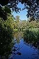 The Long Pond - geograph.org.uk - 536316.jpg