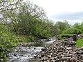 The River East Allen below Spartylea Bridge (2) - geograph.org.uk - 821641.jpg