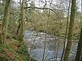 The River Knaik - geograph.org.uk - 349795.jpg