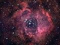 The Rosette Nebula Caldwell 49 50 Broadband.jpg