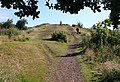 The Welland Hills - geograph.org.uk - 889019.jpg