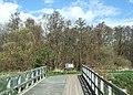 The bridge to Meare Heath - geograph.org.uk - 1248714.jpg