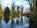 The eastern end of Haughton Pool - geograph.org.uk - 1623395.jpg