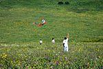The kite runner (2).jpg