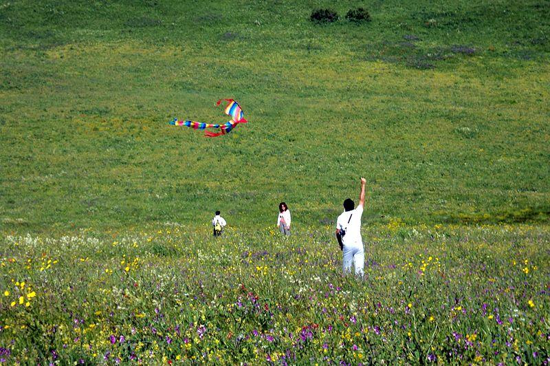 File:The kite runner (2).jpg