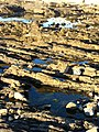 Tilted Rock Layers at Sea Point in Cape Town in South Africa.jpg