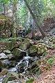 Todtnau - Wasserfallsteig an der oberen Wiese (Hebelweg) Bild 8.jpg
