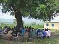 Togo Village tree 03.jpg