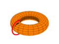 Toroidal coord poloidal only.png