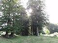 Trémauville (Seine-Mar.) la Hêtraye (02).jpg