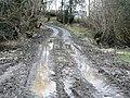 Track approaching Penisarplwyf - geograph.org.uk - 695279.jpg