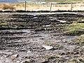 Track damage - geograph.org.uk - 678819.jpg