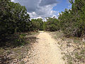 Trail in Dinosaur Valley SP.JPG
