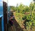 Train from Ye to Dawei 23.jpg