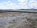 Trawbreaga Bay - geograph.org.uk - 1359744.jpg