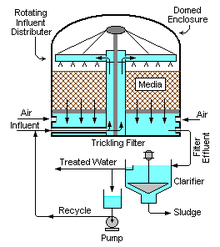 Biofilter