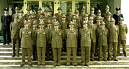 Brigata alpina